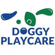 Doggy-Playcare.jpg