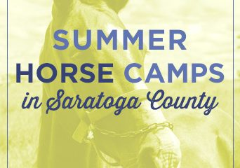 Summer Horse Camps in Saratoga County